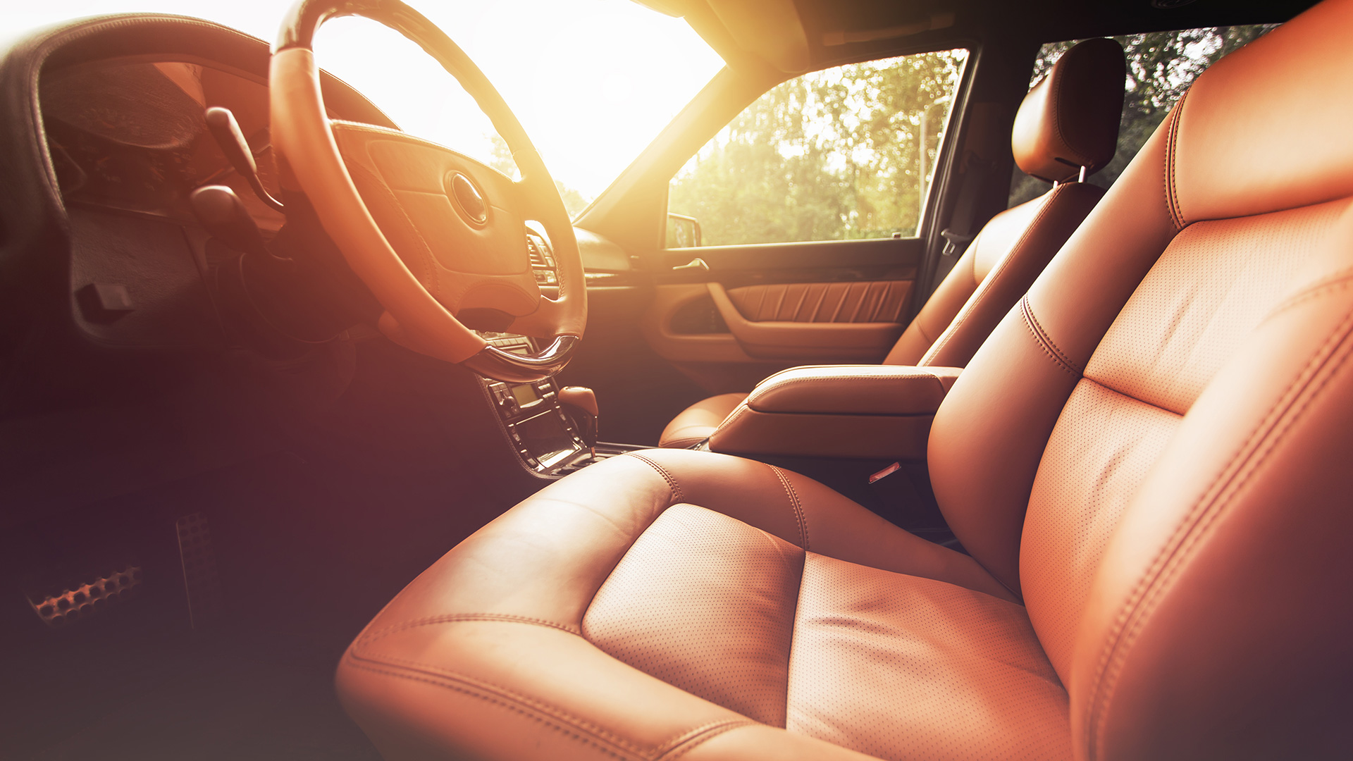 Interior of leather seats
